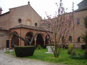 Fiorito il 'nuovo' ciliegio di Sant'Antonio in Polesine