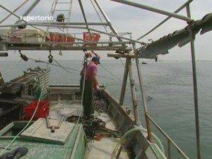 """Comacchio: """"Il poligono nuoce alla pesca"""""""