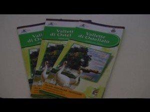 Valli di Ostellato, la nuova offerta turistica