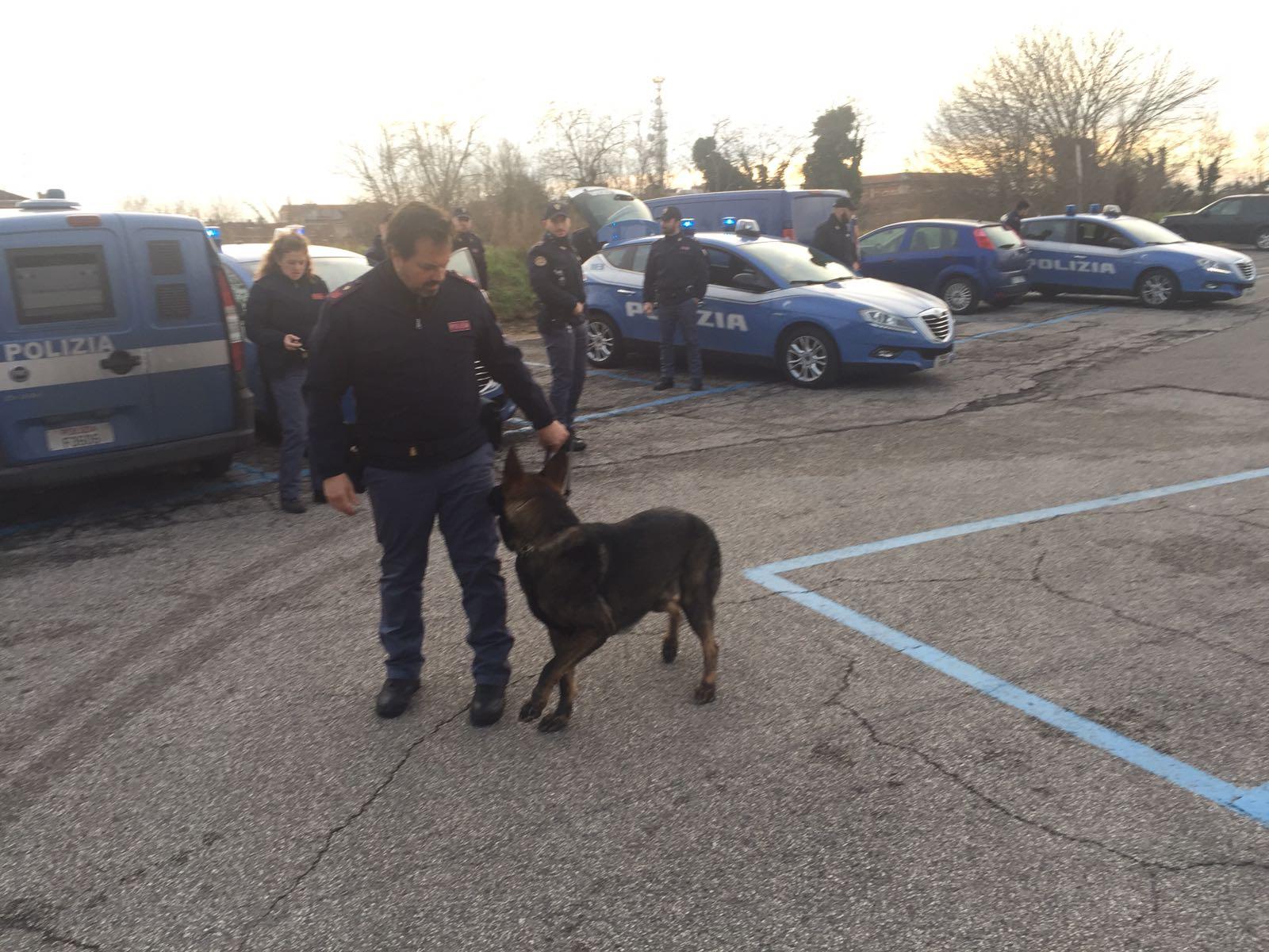 polizia cani