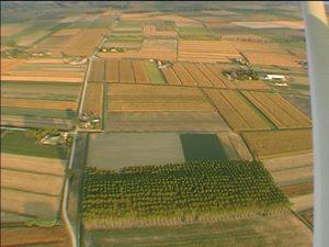 agricoltura alto provincia