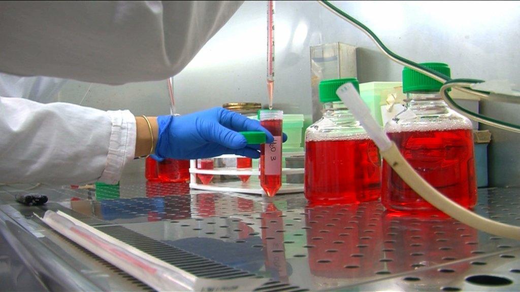 airc laboratorio