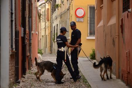 cani cinofila_polizia_municipale