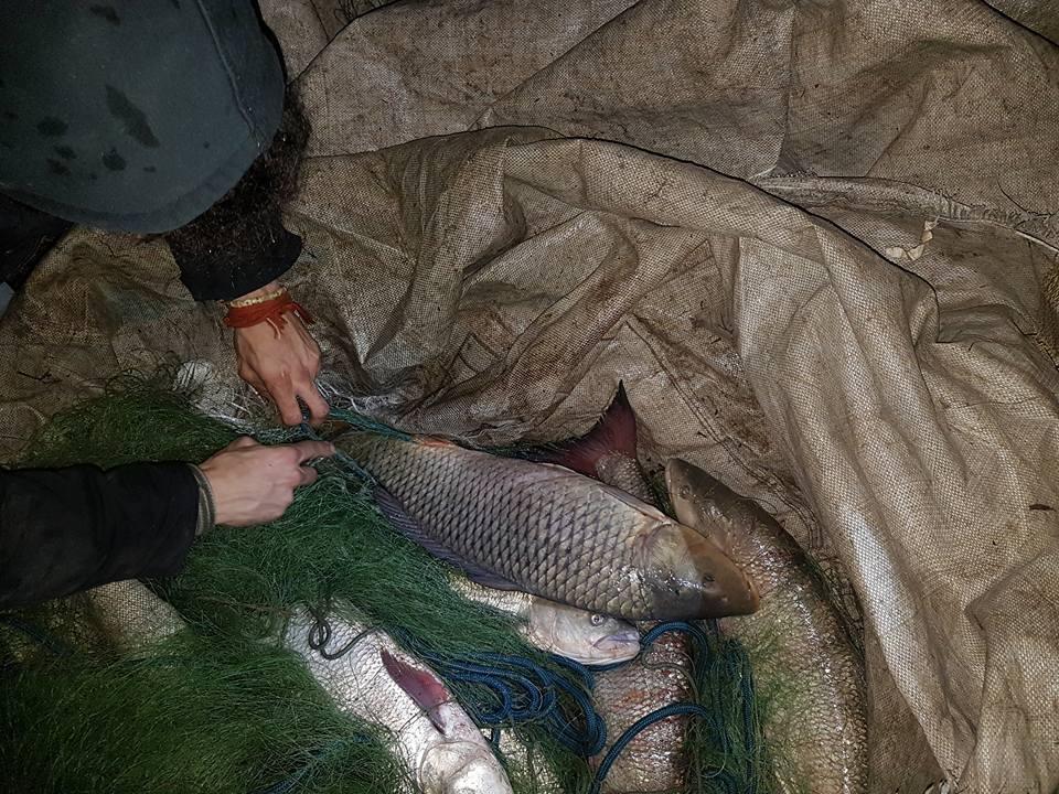 pesca bracconaggio abusiva