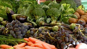 frutta verdura vendita on line agroalimentare