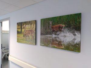 foto donazione quadri bosco mesola