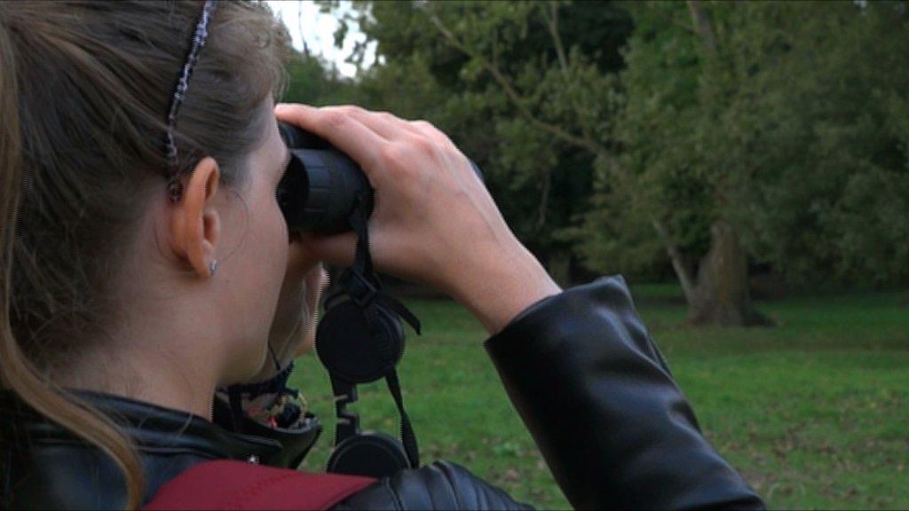 boscone mesola DELTA BIRDwatching INTERVISTA