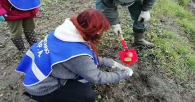 esche vleno caccia polizia provinciale bocconi avvelenati castagnoli