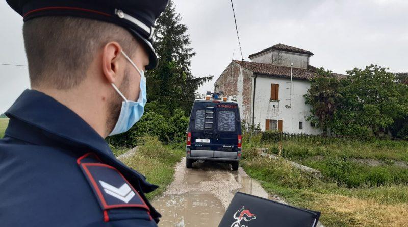 cinofili carabinieri