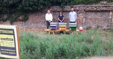 """""""Ferrara Urban Bees"""": ottimo miele ed eccellenti valori ambientali, positivi i primi risultati del progetto"""