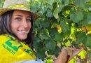 Sabato al Mercato Coperto di Campagna Amica Coldiretti Ferrara, degustazione dei vini del territorio